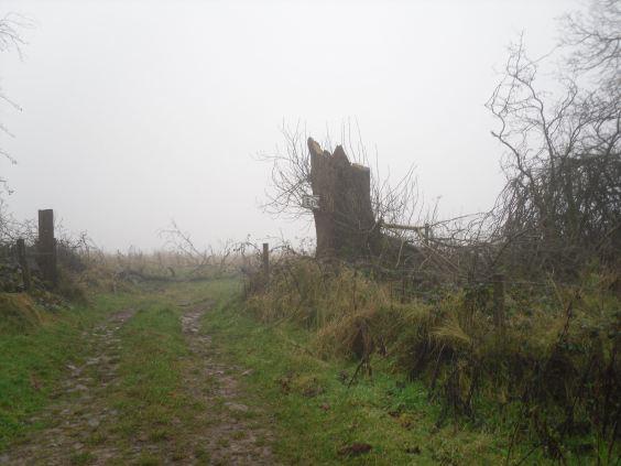 Dec 23, pic 10 Pen Hill