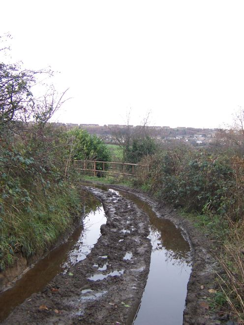 Dec 5 pic 10, miry way to Upper Denby 2